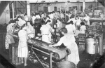 WWII women worked in factories while men  were off to war