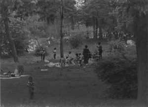Flickr Share Roy Decarava 4th of July, Prospect Park, New York, 1979