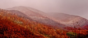 Fall In The NC Mountains-L